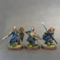 Noble Kingsguards with shields and spears