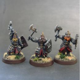 Dwarf Holds Shieldmen